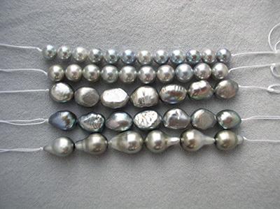 写真7:真珠処理放射線照射