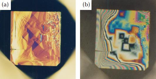 図18 非金属触媒から成長したダイヤモンド{100}面上の成長丘。(a)微分干渉顕微鏡、 (b)干渉像。
