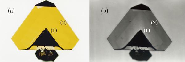 図9 (a)成長中に温度を下げた結晶の断面。明瞭ではないが内側(1)領域が外側(2)領域より黄色味が淡い。 (b) は黄色味をより明瞭にするために短波長透過フィルターを通して撮影した写真。