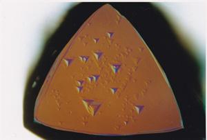 図4 (a)トライゴンが見られる天然ダイヤモンド表面。