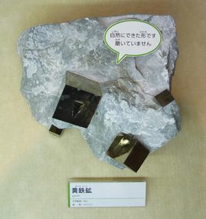 展示されていた鉱物サンプル