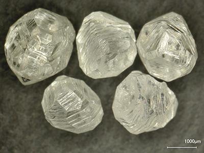 Fig.11宝飾用原石拡大
