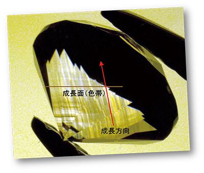 図4:褐色の色帯とそれに対してほぼ垂直に伸びる歪複屈折が見られる(交差偏光+拡散反射光)