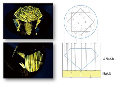 図5:褐色CVD合成ダイヤモンドの赤外反射スペクトル。CVD合成特有のピークが多数見られる