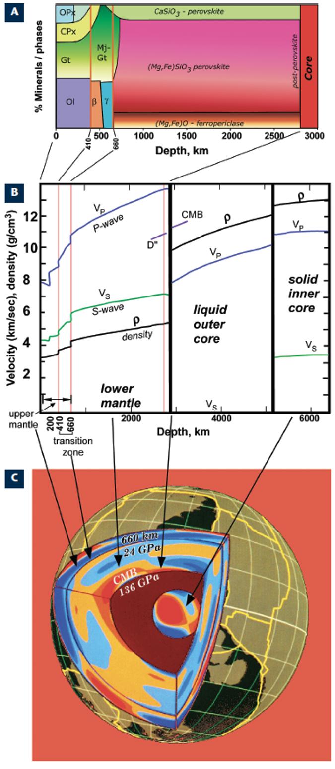 図1-2:A,B, CはBass and Parise(2008)からの抜粋