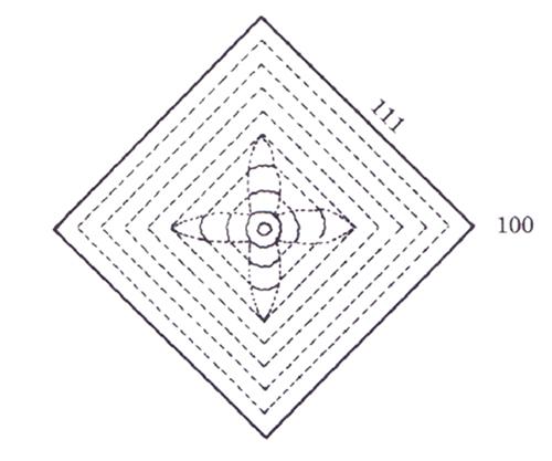図8. (001)方向に垂直で結晶中心を通る切断面上 に現れるセンター・クロス構造の模式図